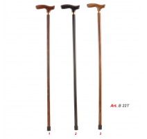 WALKING STICKS B 22T