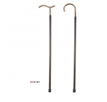 WALKING STICKS B 461